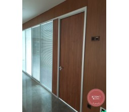 Flush medical office room door